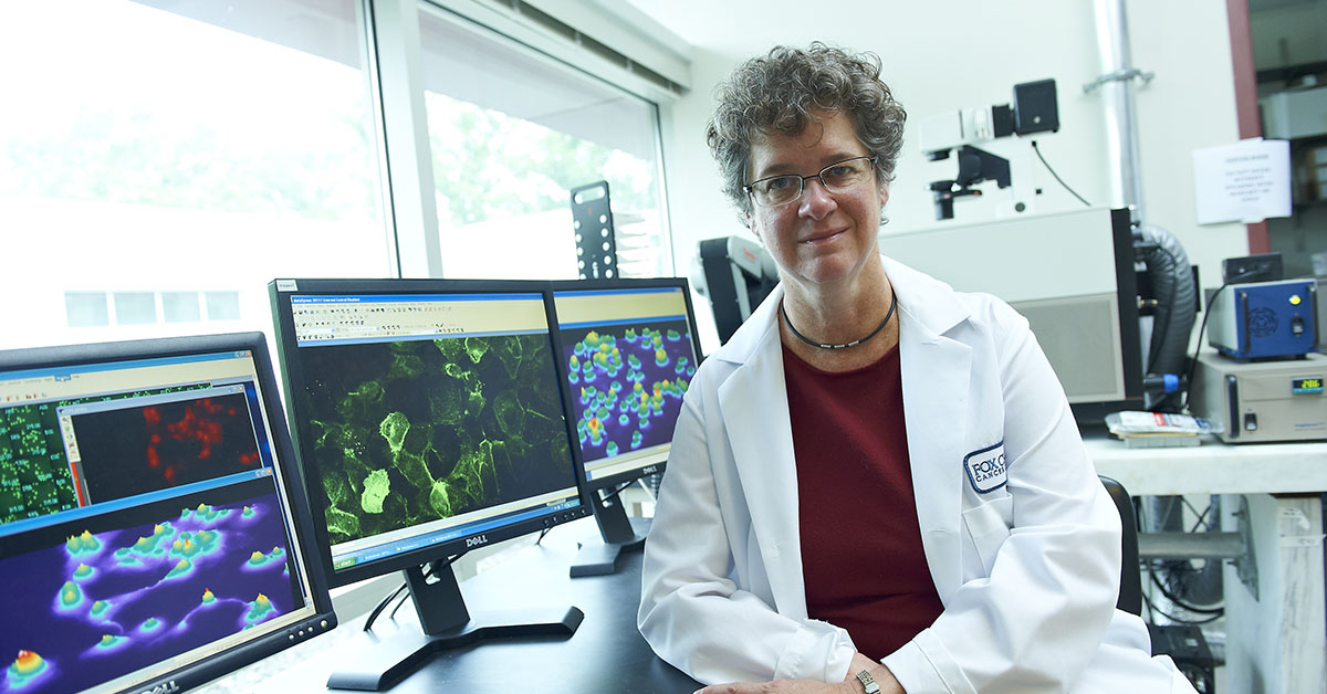 Erica Golemis, PhD, deputy chief science officer and co-leader of the Molecular Therapeutics Program at Fox Chase.