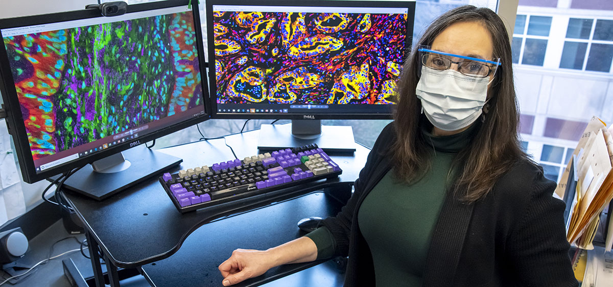 Edna Cukierman, PhD, member of the Cancer Signaling and Epigenetics research program at Fox Chase.