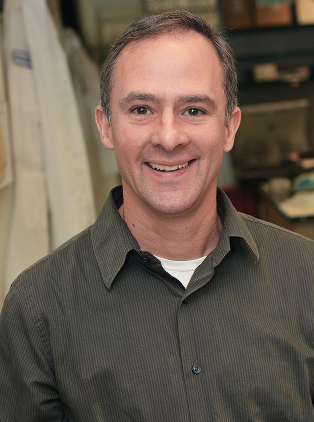 Jeffrey Peterson, PhD, associate professor of cancer biology with the Breast Cancer Translational Research Disease Group at Fox Chase, will expand upon his previous studies showing that TNBC cells have an increased reliance upon the antioxidant glutathione to avoid cell death through ferroptosis, a form of programmed cell death.