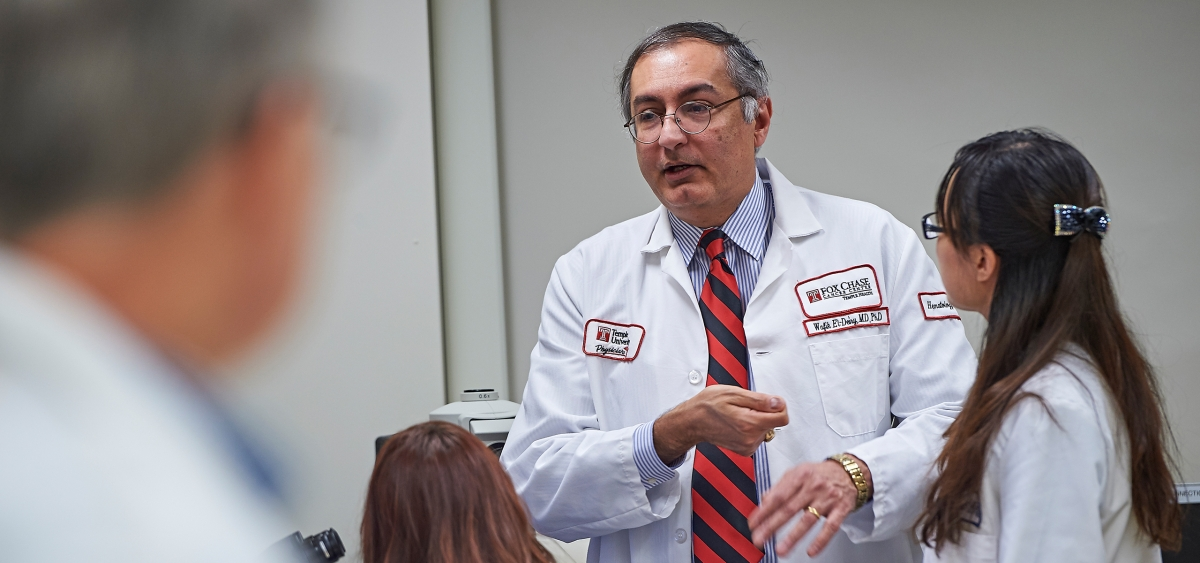 Wafik S. El-Deiry, the deputy cancer center director for translational research and co-program leader in developmental therapeutics at Fox Chase, is an international leader in translational research and one of 40 active American Cancer Society Research professors.