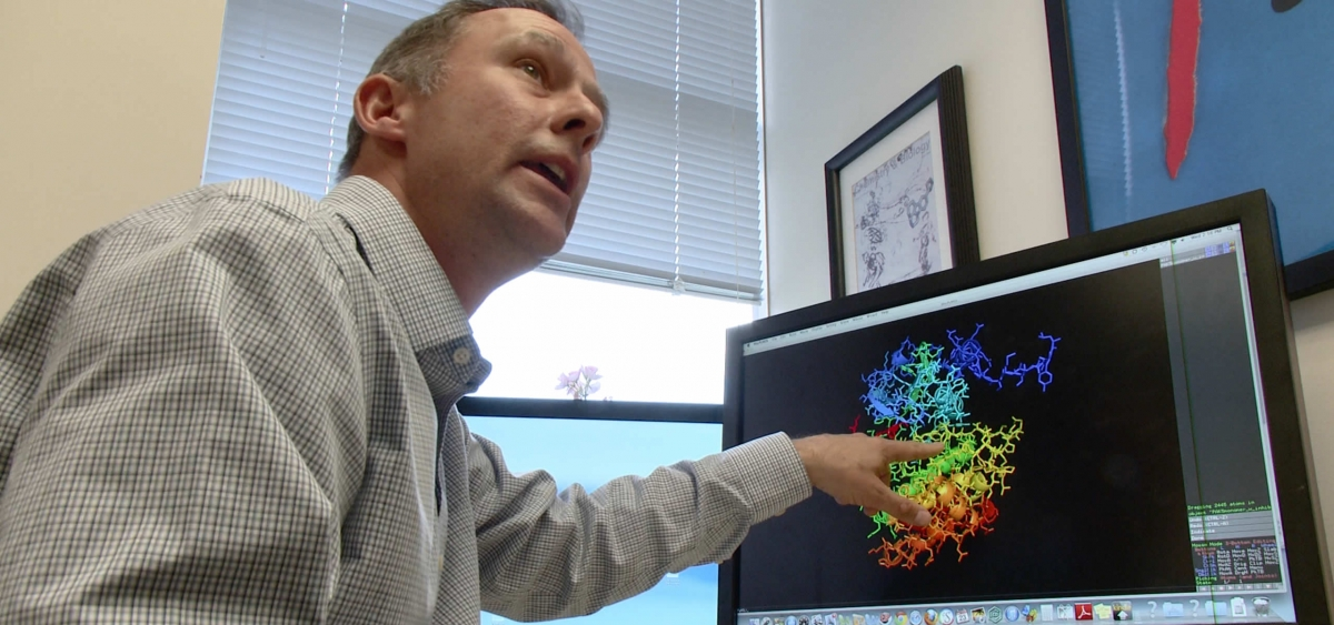 Jeffrey Peterson, an associate professor at Fox Chase, is a researcher studying protein kinases and is part of a team of scientists studying cancer biology.