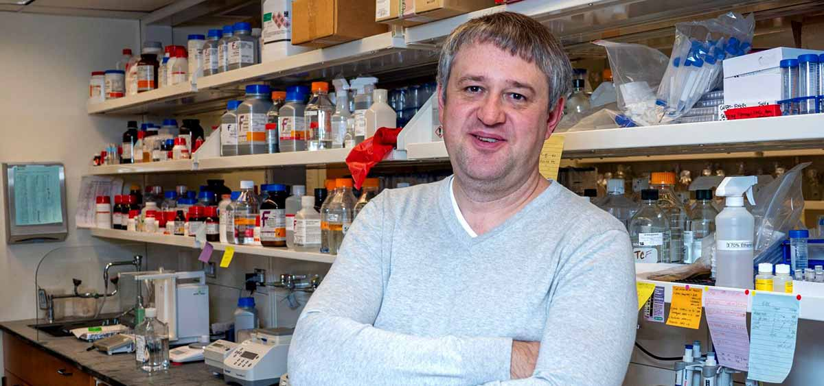 Dr. Grivennikov's two-year term on the committee begins at the upcoming American Association for Cancer Research (AACR) Annual Meeting 2020, which is being held April 24-29 in San Diego, CA. The Tumor Microenvironment Working Group formed in 2006 to improve scientific contributions to this area of cancer research.
