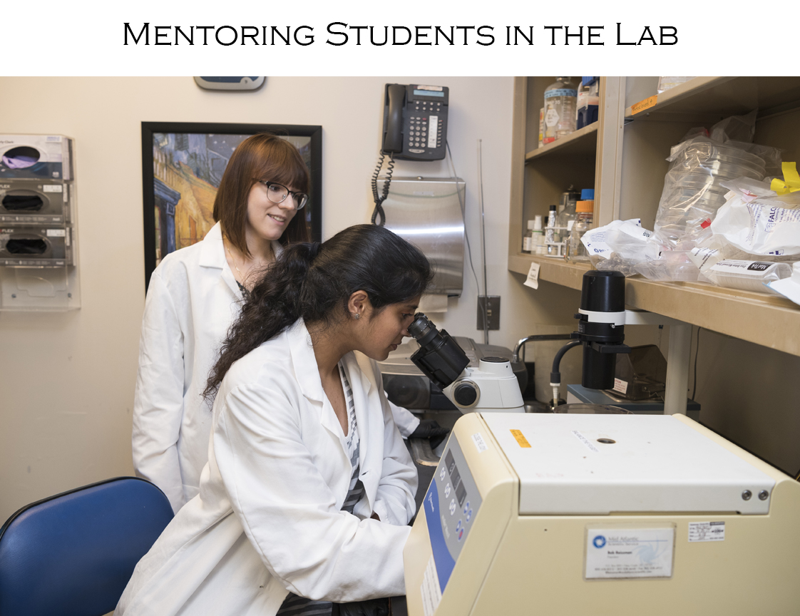 Mentoring Students in the Lab