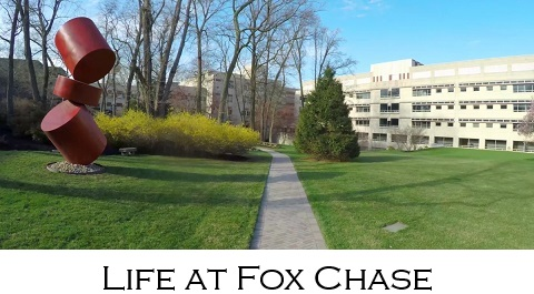 Life at Fox Chase