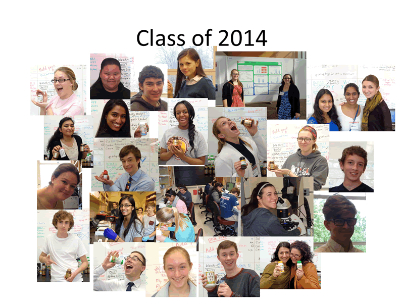 Immersion Science, Class of 2014