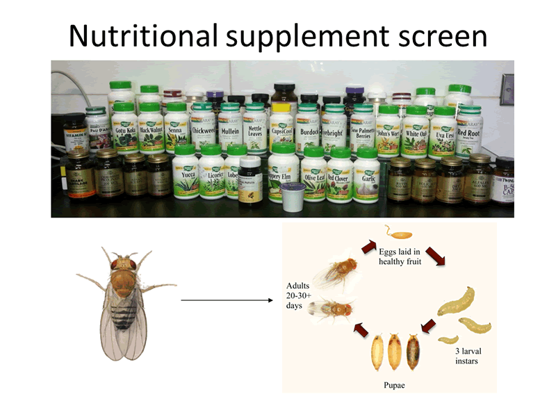 Nutritional supplement screen