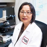 Y. Lynn Wang, MD, PhD, FCAP