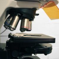 Study Available at Fox Chase Cancer Center